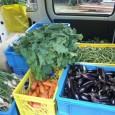 今週も石巻へ ずいぶん、気温が下がり寒くなって来ました。 こちらでも収穫できる野菜が不安定になってまいりました。 ナスやピーマンなどは今回が最後かと思われます。  毎回支援して頂いているおらほの屋提携農家の斉...
