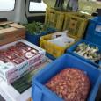 今週は急遽、東松山の仮設住宅へも配送致しました。 おらほの屋提携農家の斉藤さんからもご協力頂き、配達しました。 東松島でも野菜は、喜ばれました。地元の人達にも手伝ってもらい仮設住宅個人宅へも持って行きました。 突然でした...