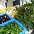 今週も雄勝仮設住宅へと野菜を配達しました。  枝豆の収穫が始まりましたのでl、新鮮な枝豆を現地へ。。。  トラックいっぱいです  他はいつもどおりのラインナップ。大根が増えました。 &...